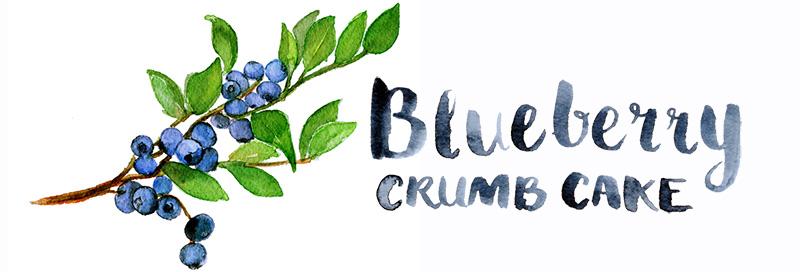 Czech Blueberry Crumb Cake